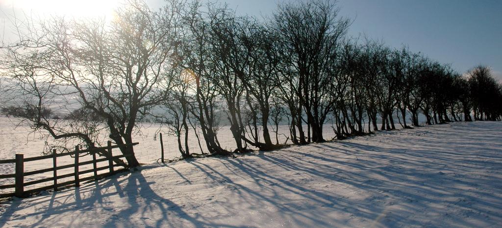 Cefns ridge, winter